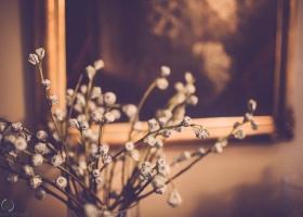 bryllupsfoto-29